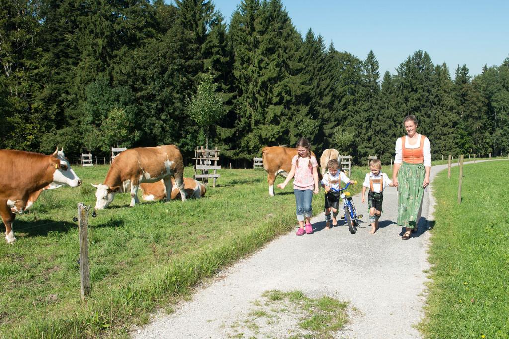 Spaziergang Chiemgau